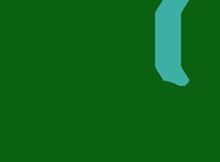 Logo: Bowdon Windows